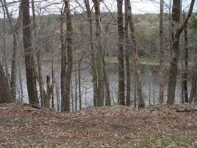 Indian Rocks Residential Lots & Land For Sale: Lot 741 Sugar Maple Mew