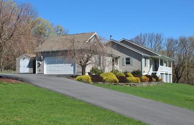 Newfoundland Single Family Home For Sale: 449 Huckleberry Rd