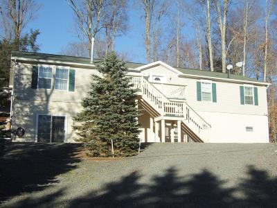 Wallenpaupack Lake Estates Single Family Home For Sale: 1037 Oak Ter