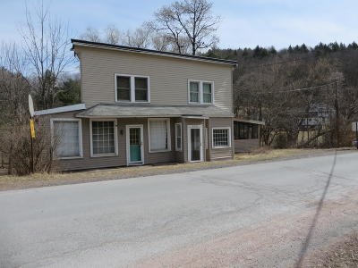 Lackawaxen Single Family Home For Sale: 206 Scenic Dr