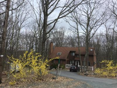 Lords Valley PA Single Family Home For Sale: $225,000