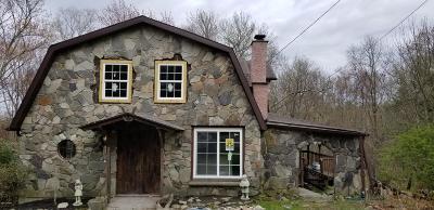 Milford Single Family Home For Sale: 204 Raymondskill Rd