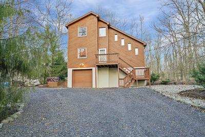 Dingmans Ferry Single Family Home For Sale: 113 Adrienne Ct