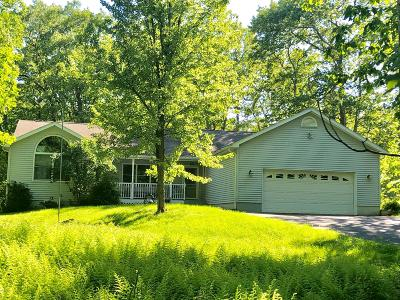 Hemlock Farms Single Family Home For Sale: 213 Mapleridge Drive