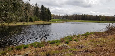 Skyview Lake Residential Lots & Land For Sale: Lot 1406 Lakeside Dr