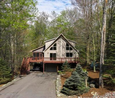 Lake Ariel Single Family Home For Sale: 541 Parkwood Dr