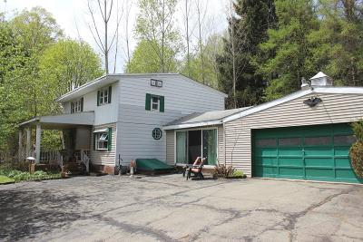 Honesdale Single Family Home For Sale: 183 Freethy Pond Rd