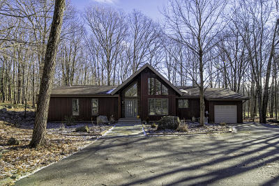 Lords Valley Single Family Home For Sale: 133 Burning Tree Dr