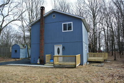 Pike County Single Family Home For Sale: 164 Davis Cir