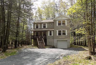 Wallenpaupack Lake Estates Single Family Home For Sale: 990 Goose Pond Rd