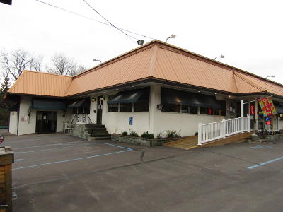 Honesdale Commercial For Sale: 186 Grandview Ave