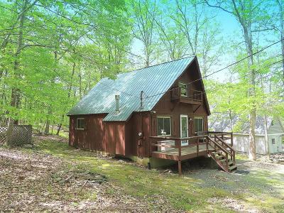 Lackawaxen Single Family Home For Sale: 127 Plateau Drive