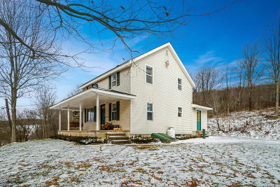 Starrucca PA Single Family Home For Sale: $379,000