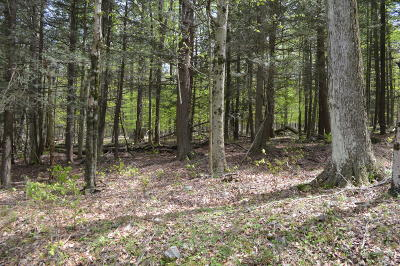 Greentown Residential Lots & Land For Sale: Lot 80 E River Dr