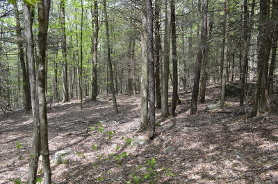 Greentown Residential Lots & Land For Sale: Lot 19 Pike Ln