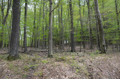 Residential Lots & Land For Sale: Lot 281R Fawnwood Dr
