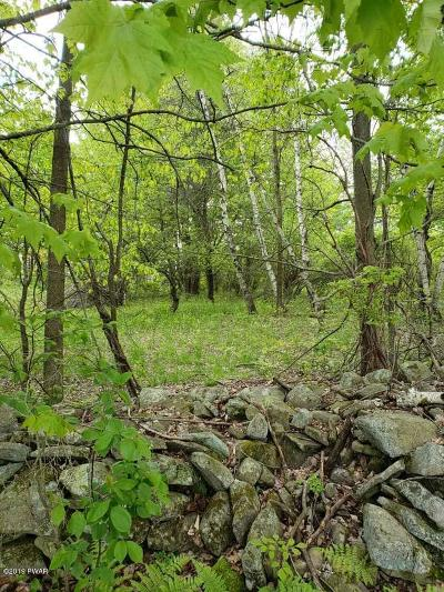 Pleasant Mount Residential Lots & Land For Sale: Great Bend Tpke