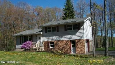 Lake Ariel Single Family Home For Sale: 310 Lake Spangenberg Rd