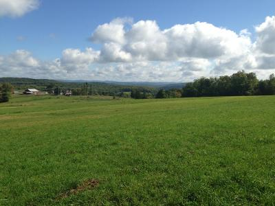 Starrucca PA Residential Lots & Land For Sale: $299,000