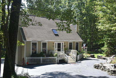 Hemlock Farms Single Family Home For Sale: 131 Pinto Lane