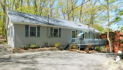 Lords Valley PA Single Family Home For Sale: $139,000