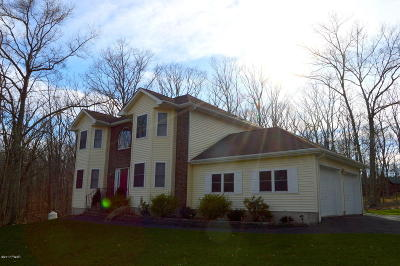 Pike County Single Family Home For Sale: 120 Red Rock Cir