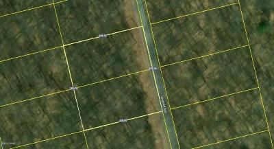 Gouldsboro Residential Lots & Land For Sale: 62 & 63 Emerald Ave
