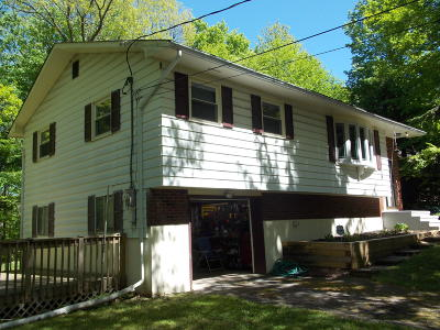 Single Family Home For Sale: 114 114 Lookout Point Rd