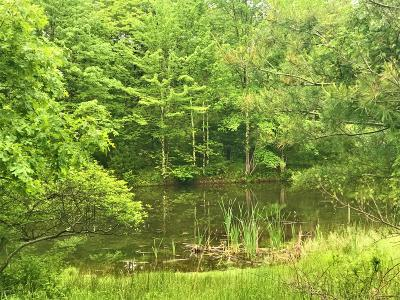Pike County Residential Lots & Land For Sale: Lot 1247 Van Auken Hill Rd
