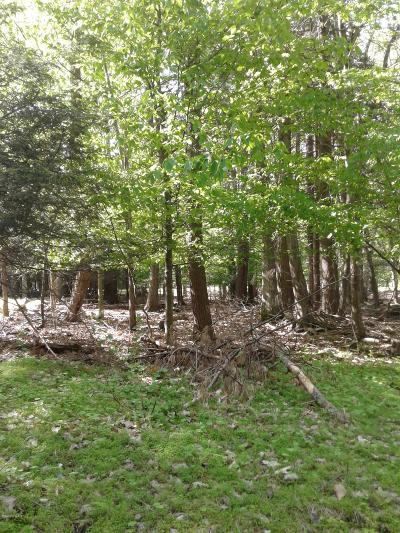 Lakeville Residential Lots & Land For Sale: 92 Cardinal Ct
