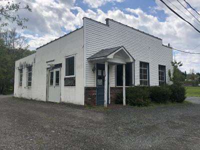 Honesdale PA Commercial For Sale: $159,900