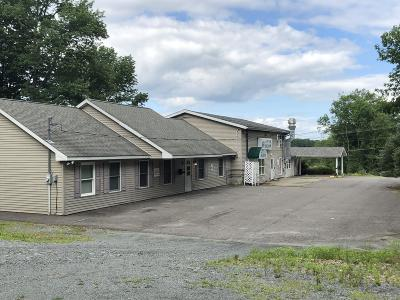Honesdale PA Commercial For Sale: $399,999