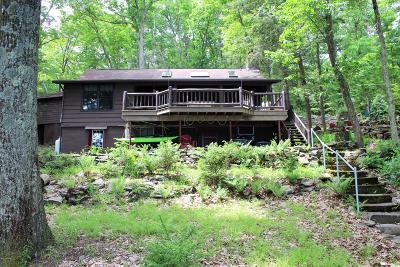 Tafton PA Single Family Home For Sale: $649,900