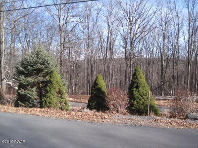 Pike County Residential Lots & Land For Sale: 236 Upper Independence Dr