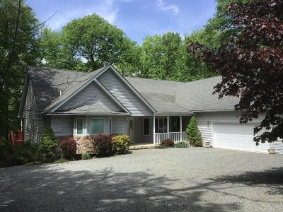 Hemlock Farms Single Family Home For Sale: 120 Mustang Dr