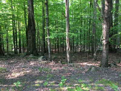 Residential Lots & Land For Sale: 4294 Chestnut Hill Dr