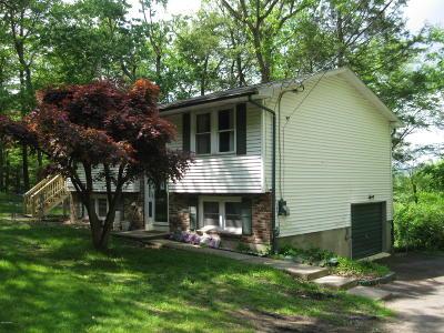 Matamoras Single Family Home For Sale: 1225 Delaware Dr