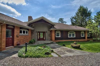 Honesdale Single Family Home For Sale: 101 Golf Hill Rd