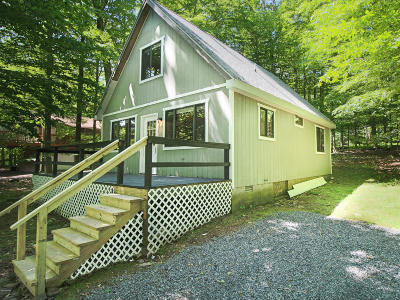 Wallenpaupack Lake Estates Single Family Home For Sale: 1007 Fawnhill Ct