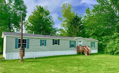 Honesdale Single Family Home For Sale: 167 Slish Rd