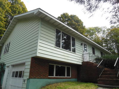 Honesdale Single Family Home For Sale: 243 Willow Ave