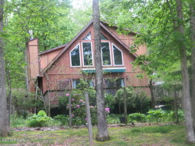 Pike County, Wayne County Single Family Home For Sale: 104 Kiel Rd