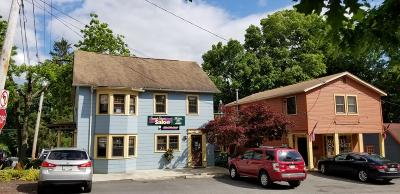 Milford Commercial For Sale: 401 E Harford St