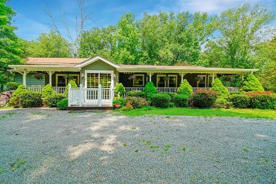 Single Family Home For Sale: 106 Quarter Horse Ln