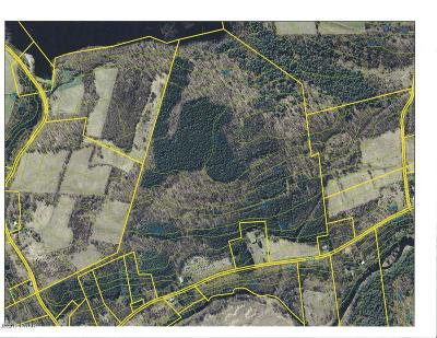 Wayne County Residential Lots & Land For Sale: 1019 Creek Dr