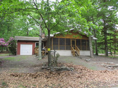 Wallenpaupack Lake Estates Single Family Home For Sale: 1004 Ski Bluff Ter