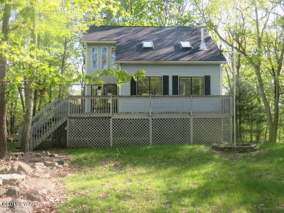 Dingmans Ferry Single Family Home For Sale: 113 Keystone Dr