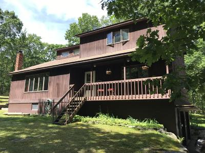 Milford Single Family Home For Sale: 1275 Pa-739