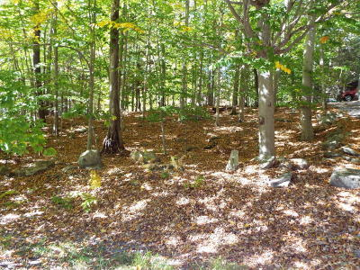 Wallenpaupack Lake Estates Residential Lots & Land For Sale: 1 Canary Ln