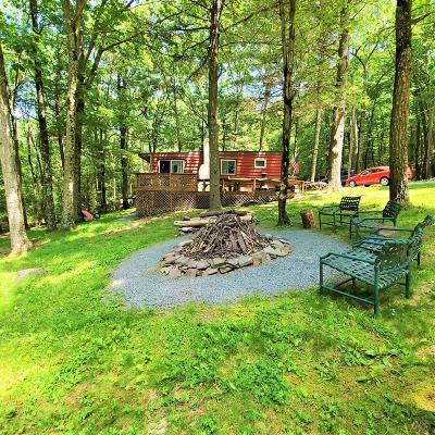 Paupack Single Family Home For Sale: 118 Steves Rd